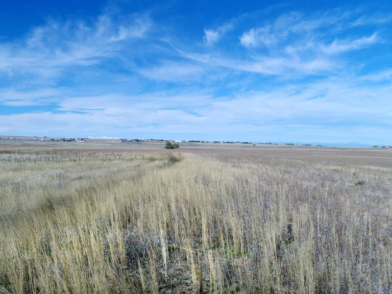 Tract 3 - 320 Acres - Grazing and Dry Farm Land