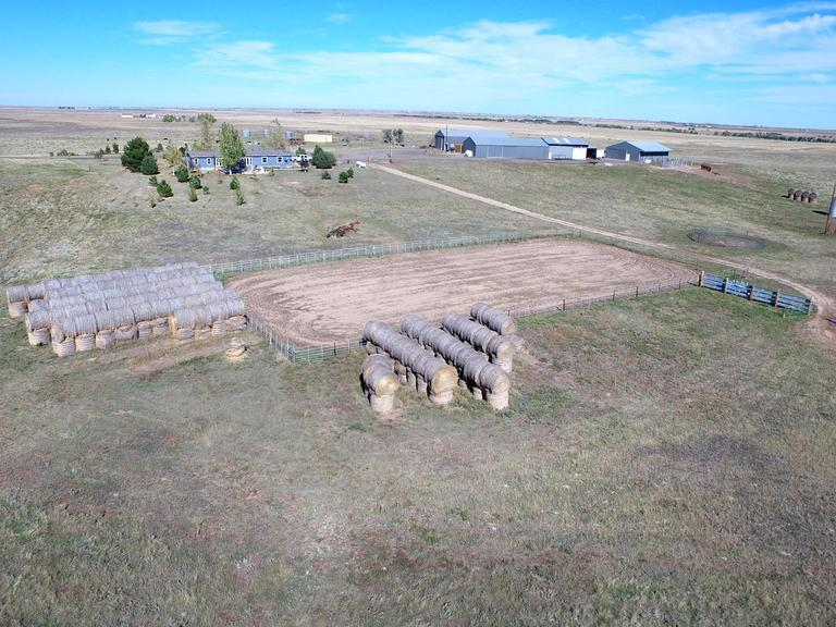 Tract 1 - 60 Acre Bison Ranch