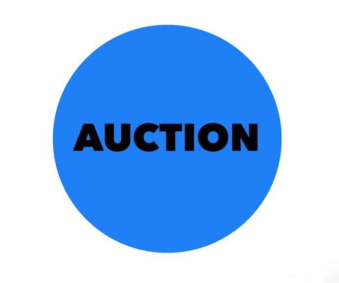 BLUE Nowthen Online Auction #9