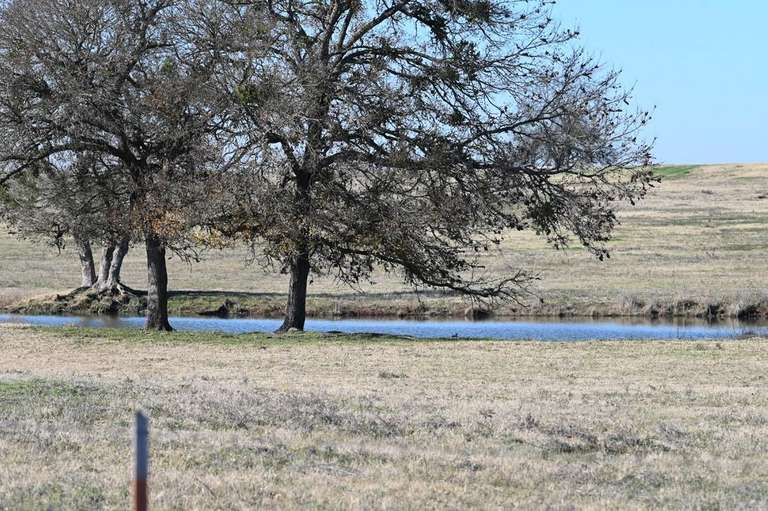 Ranch Land for Sale in North East Texas