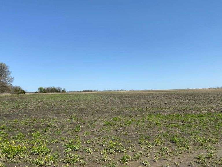 Land and Ranch Property in North East Texas