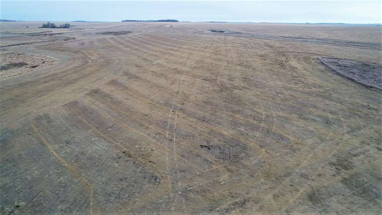 Hamlin County Crop & Hunting Land For Sale