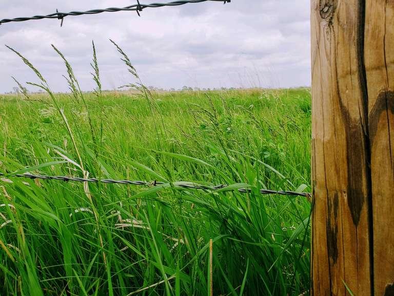 Pasture Near Huron, SD Online Land Auction!