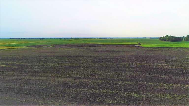 126+/- Acres of Cropland Near Arlington, South Dakota