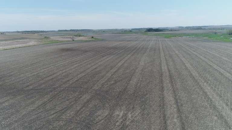 Crop and RIM Land Near Arco, Minnesota
