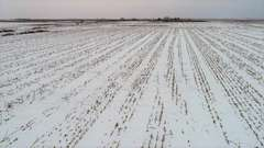 Spink County SD Crop land and Hunting For Sale