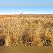 Land For Sale Near Highmore, SD