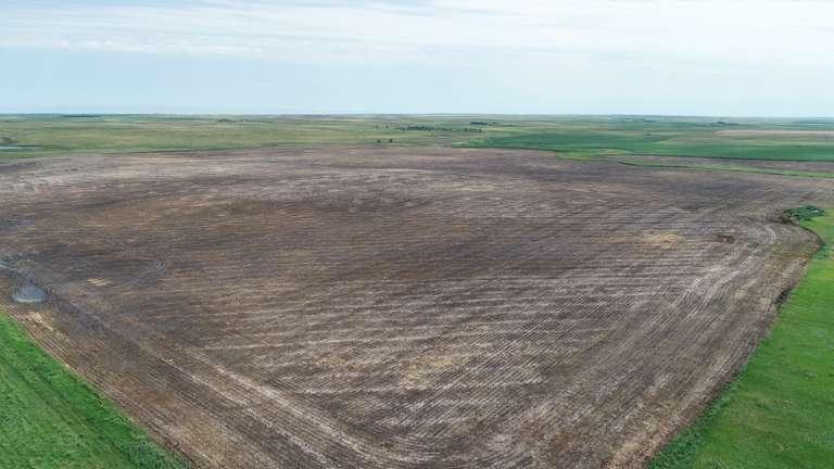 Crop Land Near Highmore, SD Online Land Auction!