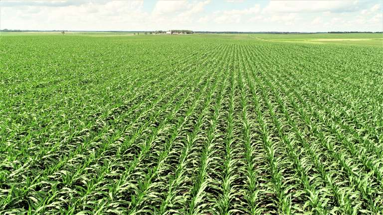 Prime Minnehaha Co. Crop Land for Rent - 754.2 Acres
