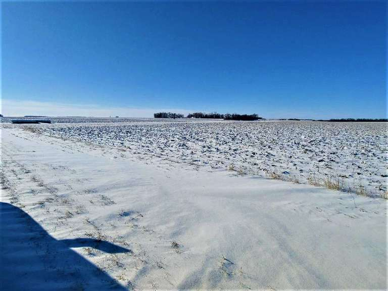 Prime Brookings County Land for Rent