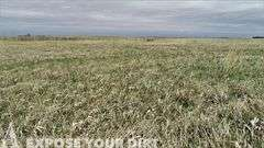 Beadle County SD Land Auction
