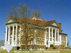 Montague County, Texas