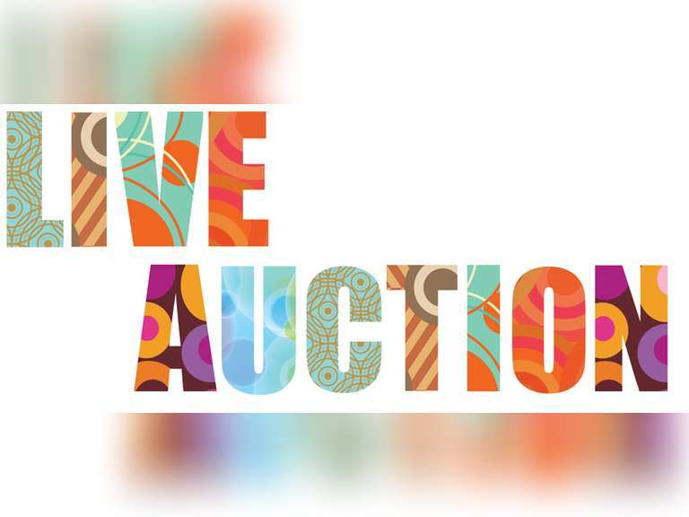 CANCELED DUE TO CORONAVIRUS Live Auction March 20th at 6:00PM in Swartz Creek