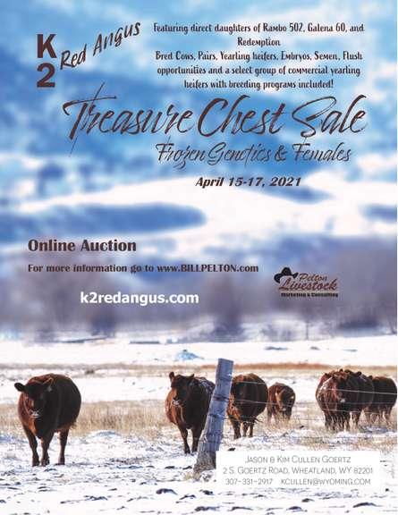 Treasure Chest Sale