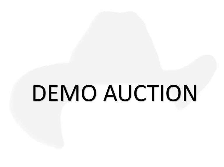 Demo Auction 30 second Extended Bidding, close in Sale Lot order