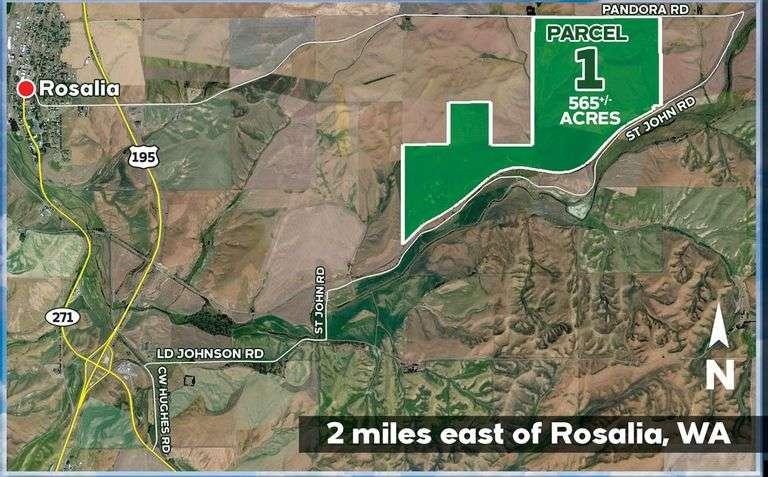 565 +/- Acres Near Rosalia, WA