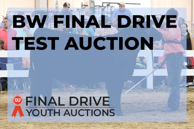 BW Final Drive Youth Auctions Test Premium Test Sale