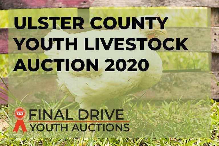 Ulster County Youth Livestock Auction 2020