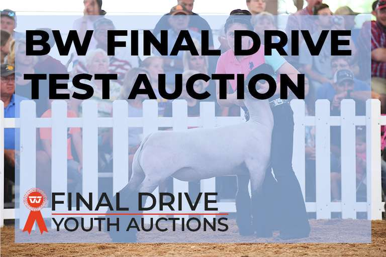 BW Final Drive Youth Auctions Premium Test Sale