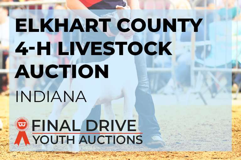 Elkhart County 4-H Livestock Auction - Indiana