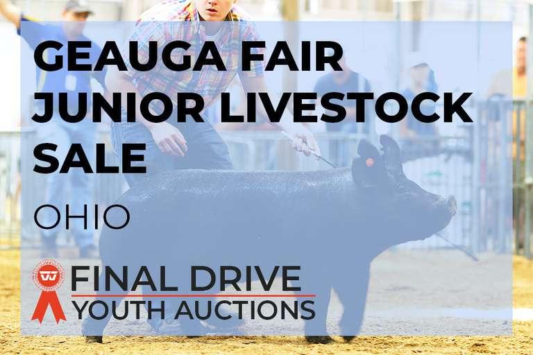 Geauga Fair Junior Livestock Auction - Ohio