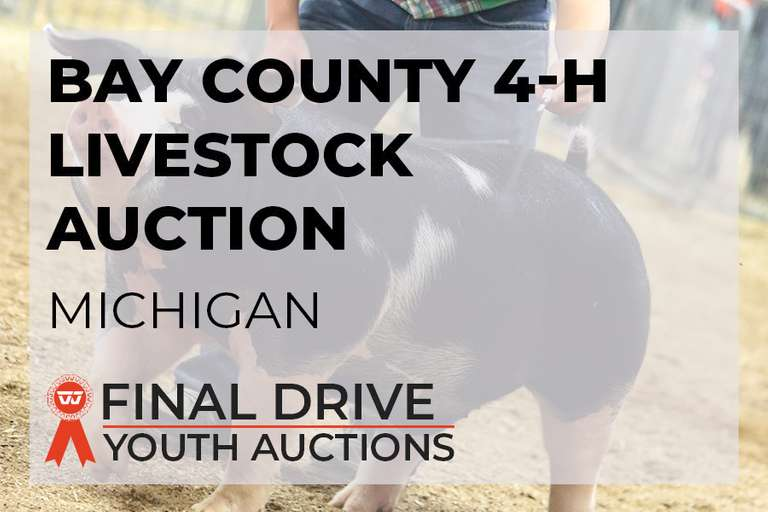 Bay County 4-H Livestock Auction - Michigan