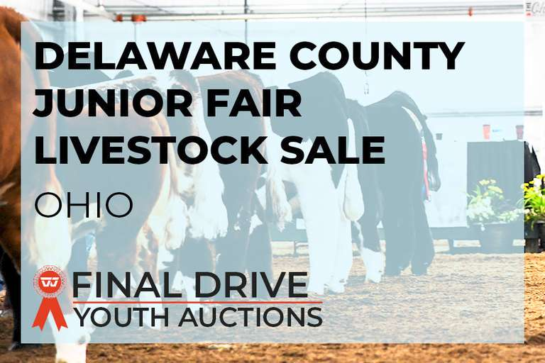 Delaware County Ohio Junior Fair Add-On Only Sale - Ohio