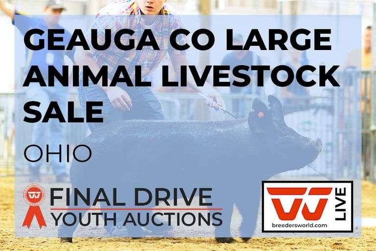 Geauga Co Large Animal Livestock Sale - Ohio