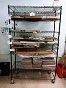10 Shelf Utility Rack on Wheels