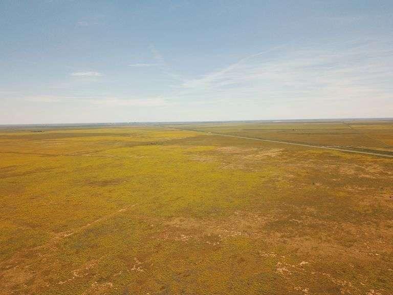 Sherman & Dallam County CRP Grass Auction