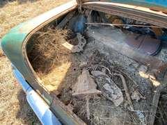 1958 Chevrolet Delray 2 Door Sedan