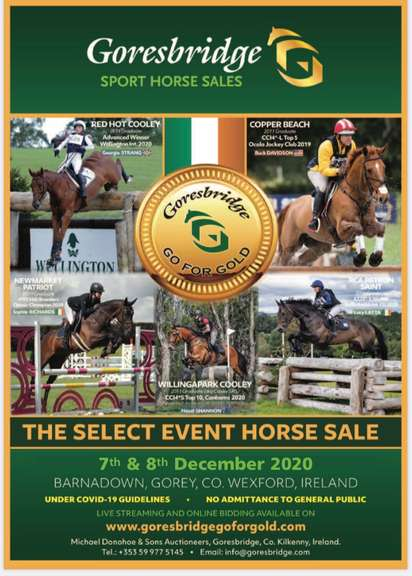 Go For Gold Select Event Horse Sale