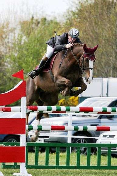 September Sport Horse Performance Sale Sept 14th - Day 5
