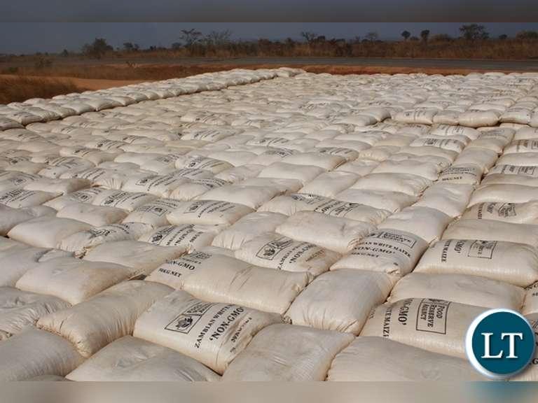 Maize Auction