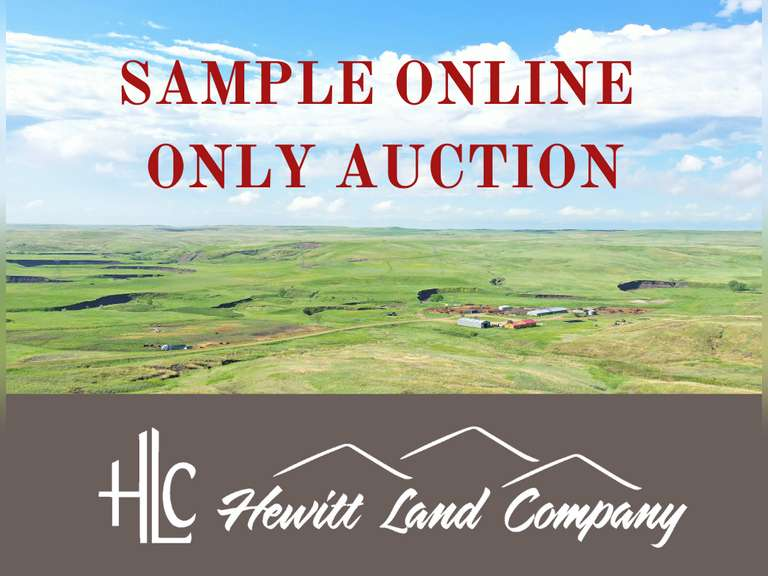 Sample Online Only Auction