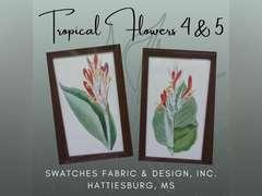 "FRAMED PRINTS ""TROPICAL FLOWERS 4 & 5"""