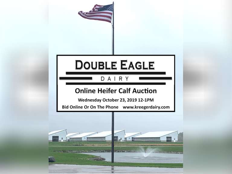 Double Eagle Online Calf Auction