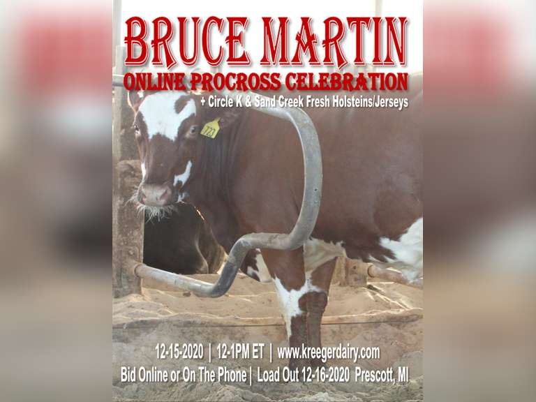 Bruce Martin ONLINE Procross Celebration + Circle K, Sand Creek, & Choate Fresh Holsteins & Jerseys