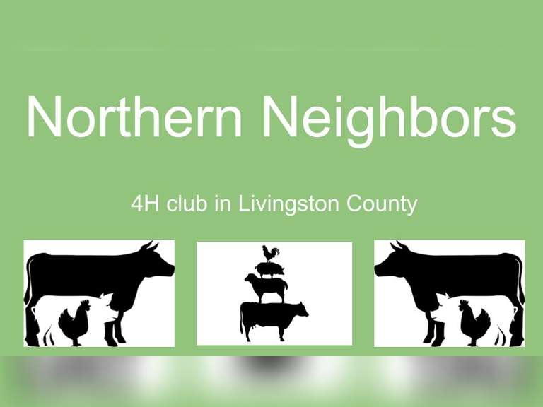 Northern Neighbors Online Project Auction