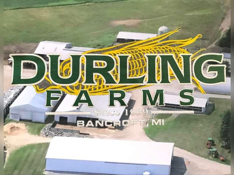 Durling Farms Milking Herd & Bred Heifer Dispersal