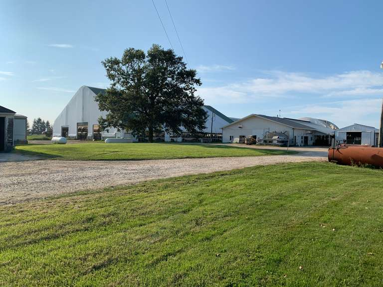 Turn Key Dairy Farm For Sale (Harbor Beach, MI)   1240 Sand Stalls. 79 +/- Acres, Double 12 Parallel Parlor, 18 Mil Gal, Manure Storage, Heated Shop, House & More !   Priced at $2,000,000   Contact Joey Kreeger 989-912-0059 at Rosegold Realty for more information on real estate   Cattle, Feed, & Equipment are also available-Contact Chad Kreeger 517-294-3484 or any team member on these