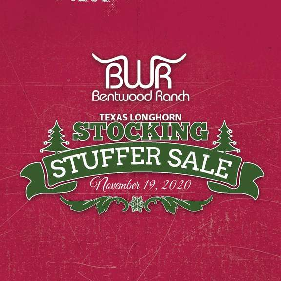 Stocking Stuffer Sale