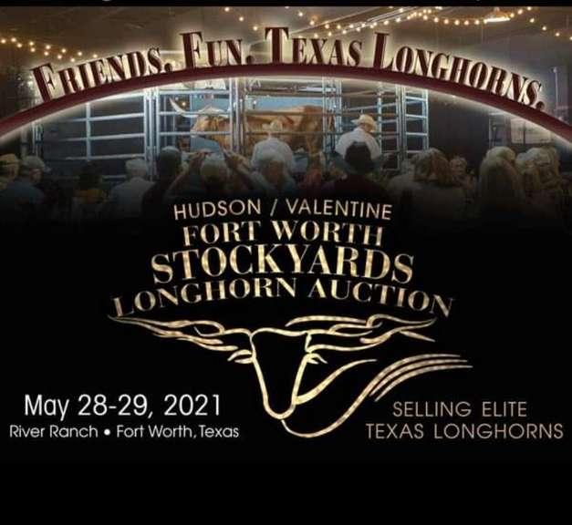 Fort Worth Stockyards Longhorn Auction