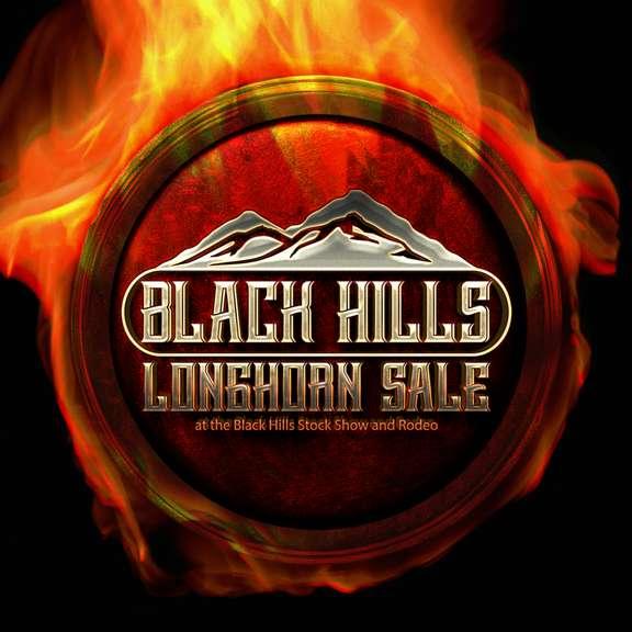 Black Hills Longhorn Sale