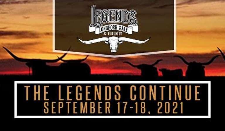 Legends Longhorn Cow Sale