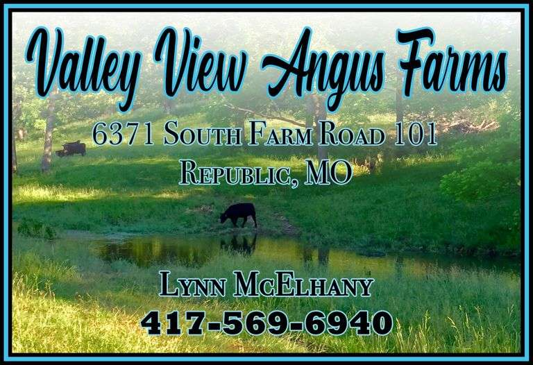 Valley View Angus Farms - Geno-Pheno Heifer Sale