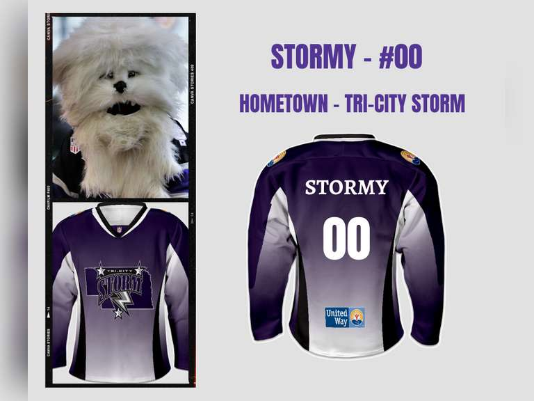 United Way / Tri-City Storm Jersey Online Auction