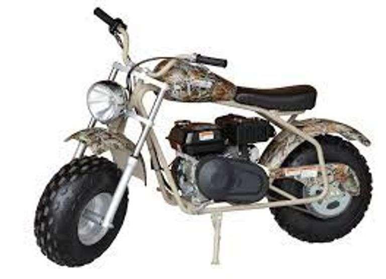 Coleman Power Sports Gas Mini Bike