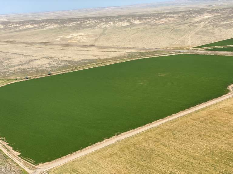 Werbelow Brothers Farm, Greybull, Wyoming 1,143 +/- acres  - *COMING SOON!*