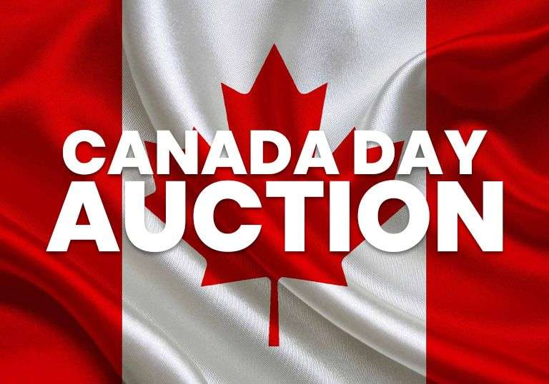 🍁Canada Day Auction🍁 - Misguided Freight / E-Retailer Returns & Overstock